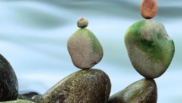 Famiglie equilibriste. Nuovi progetti di conciliazione